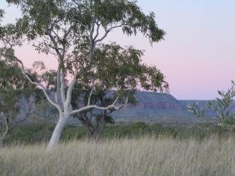 Evening in north Kimberley.