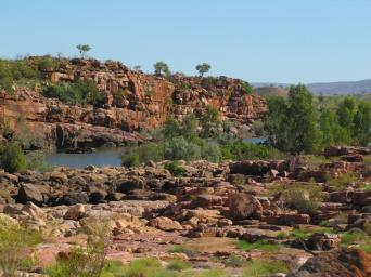 Fitzroy River in central Kimberley.